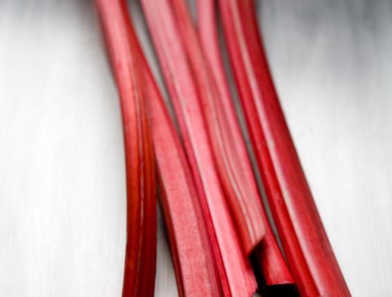 rhubarbV5